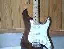 Guitar Proshop GWNN