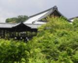 東福寺の写真2枚目
