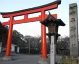 平野神社の写真2枚目