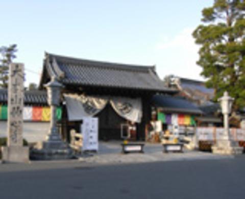 妙心寺の写真