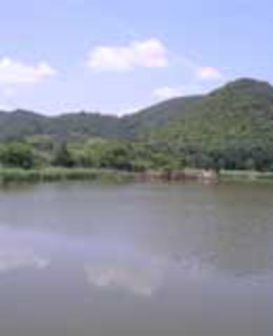 広沢池の写真