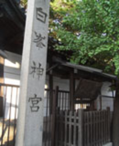 白峯神社の写真