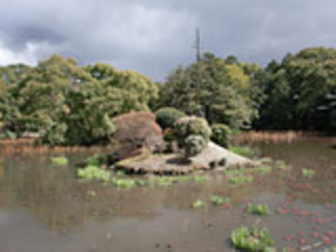 勧修寺氷池園の写真