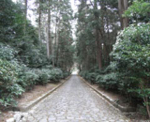 天智天皇山科陵の写真